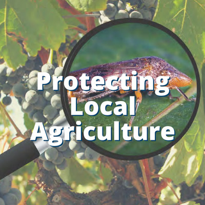 Protecting Agriculture